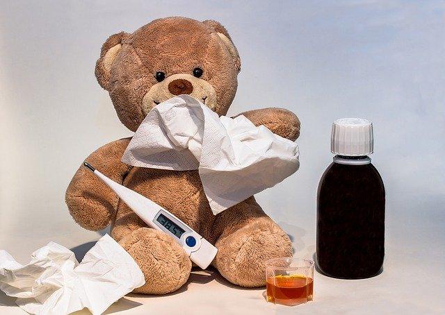 nemocný medvěd