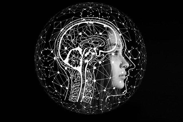 mozek černobíle